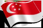 雷竞技raybet官网东平新加坡项目